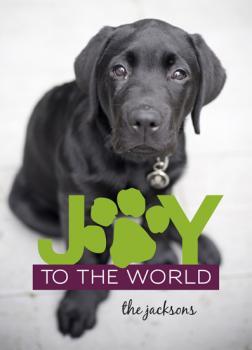 Holiday Puppy Joy Holiday Photo Cards