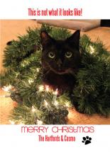Cosmo the Merry Christm... by Deanna Pickford