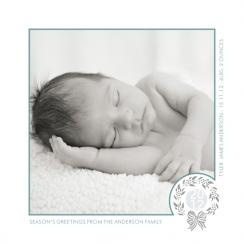 Silver Holly Holiday Photo Cards