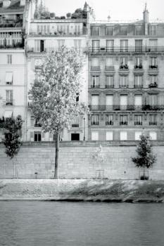 Morning Walk on the Seine