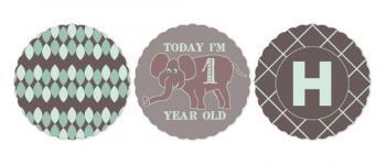 I'm 1 Happy Elephant Party Decor