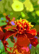 marigoldgoround by Jennifer Gundling
