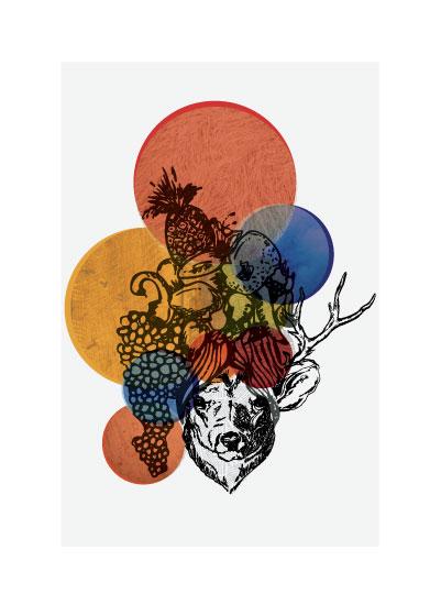 art prints - Deer Miranda by Eva Nashed