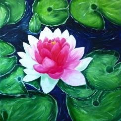 Blushing Lotus