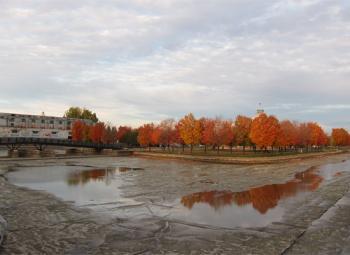 Colours on Autumn