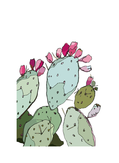 art prints - A Prickled Pear by ALFIE design