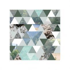 Triangular Washington