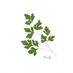 Parsley Art Prints