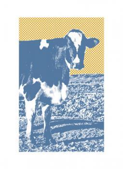Blue Petaluma Cow
