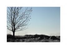 Empty Air by Kristi