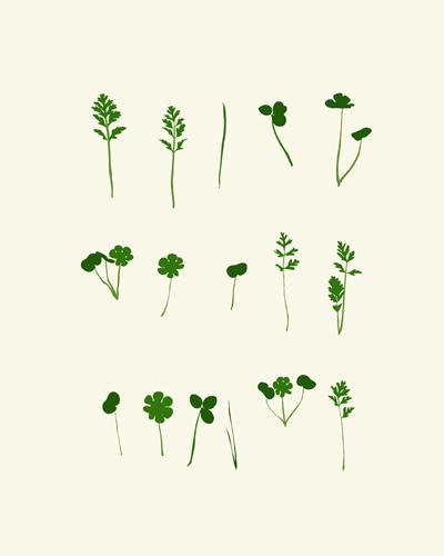 art prints - Baby Weeds by Jorey Hurley