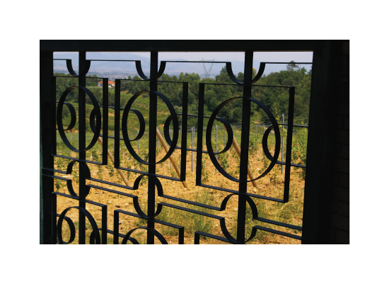 art prints - Tuscan Vineyard Fence by Jacquelyn Hardies
