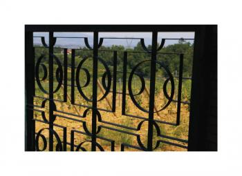 Tuscan Vineyard Fence