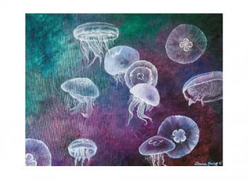 Aurelia Jellyfish Art Prints