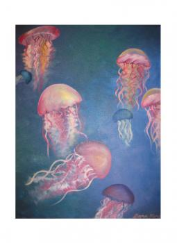 Pacific Sea Nettle Jellyfish Art Prints