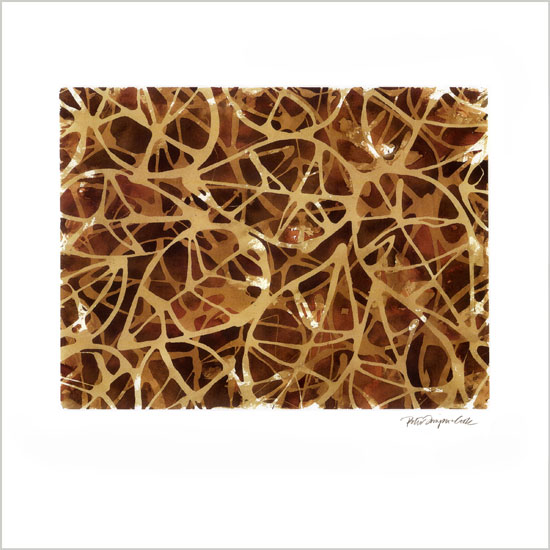 art prints - Umber by Peter Simpson Cook