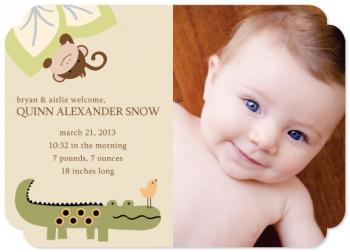 Jungle Play Birth Announcements