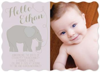 Hello Elephant Birth Announcements