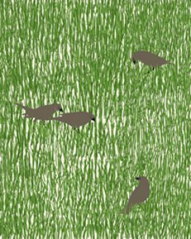 Birds in the Grass Art Prints