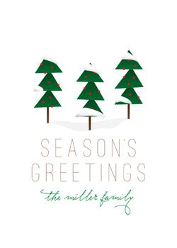 Season's Greetings Non-Photo Holiday Cards