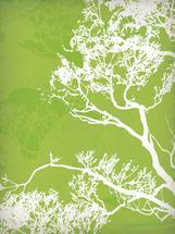 Sage Branches by Ankita Kejariwal