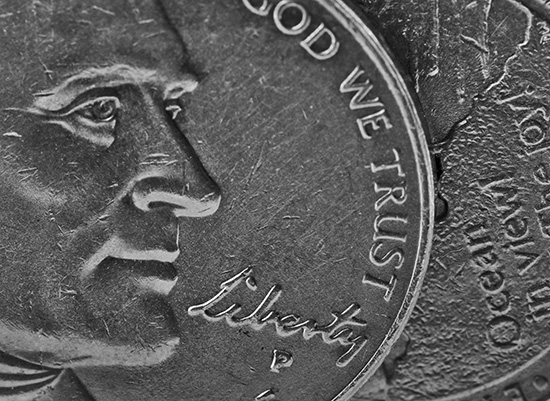 art prints - liberty NICKEL by Gail Schechter