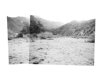 desert diptych