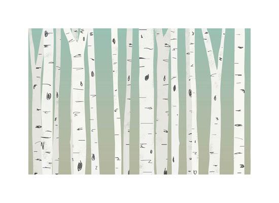 art prints - Birch Sunrise by Heather Buchma