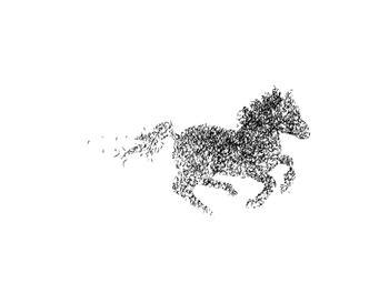 Galloping Wind
