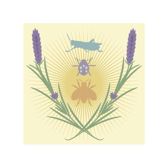 art prints - Lavender by TeeEm
