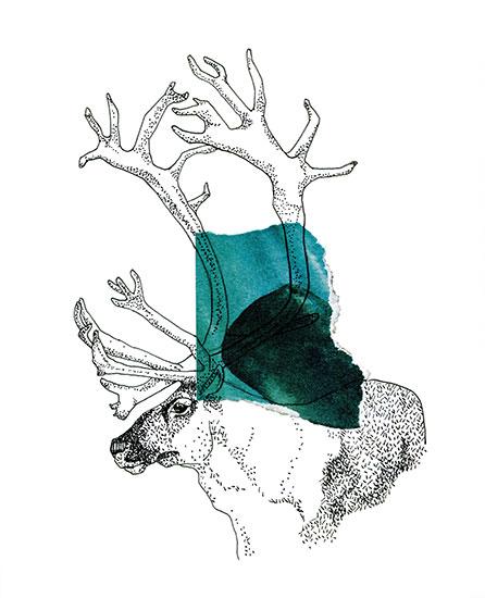 art prints - Elk by Gaia Cornwall