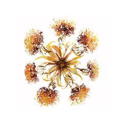 Gaia Petals