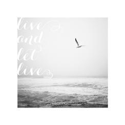 Live and let live Art Prints