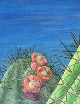 Spring Flowers by Drake Pillsbury