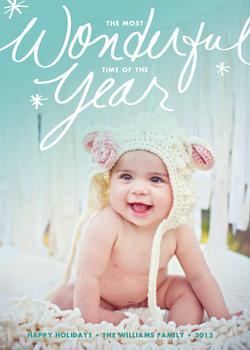 Wonderful Year Holiday Photo Cards
