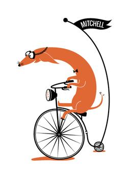 Cycling Sausage