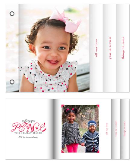 minibook cards - Pretty as a Picture by Christina Novak