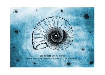 sea of ammonites