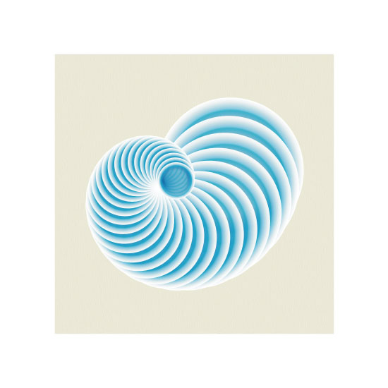 art prints - Seashell by Cindy Jost