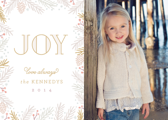 holiday photo cards - Seasonal Frame