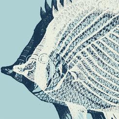 Sea Creature II