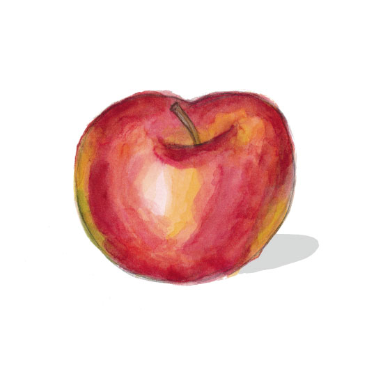 art prints - An apple a day