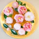 Camellias in Bloom by Erika Tracy
