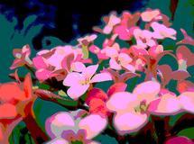 pink little flowers by lulablu