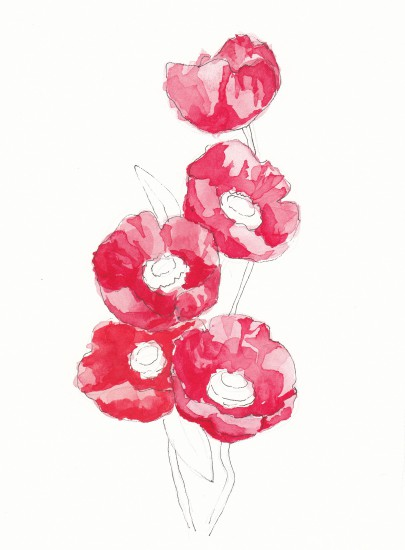 art prints - Poppies