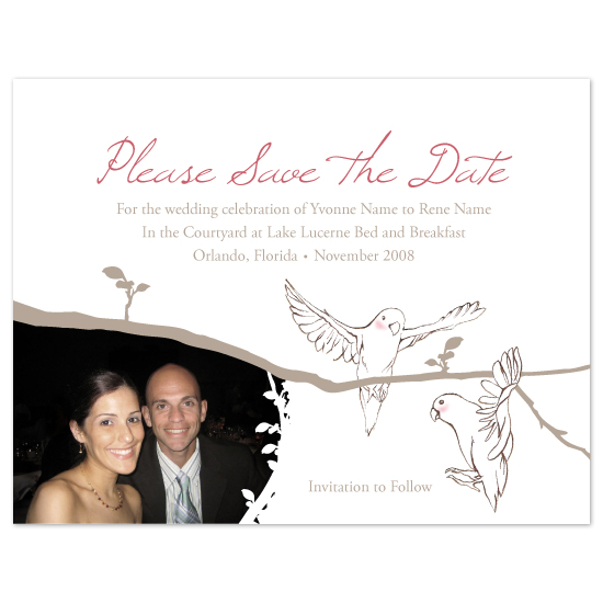save the date cards - A New Branch of Love by Brittany Burns