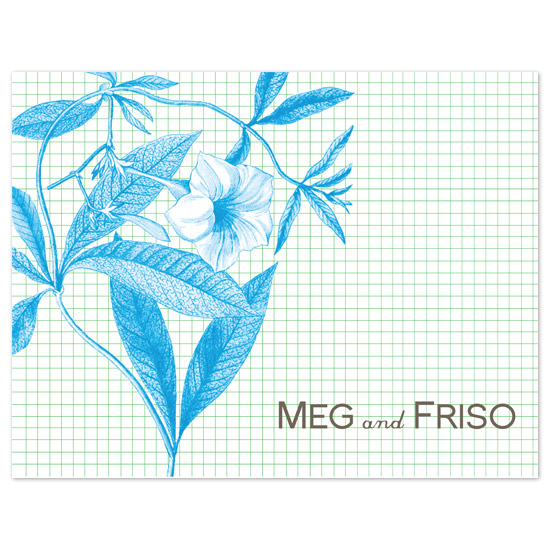 thank you cards - Graph Paper by beth perry DESIGN