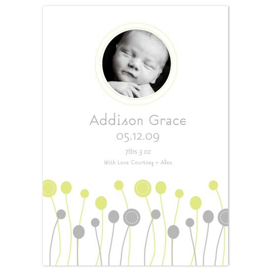 birth announcements - Mod Willow by Asato Design