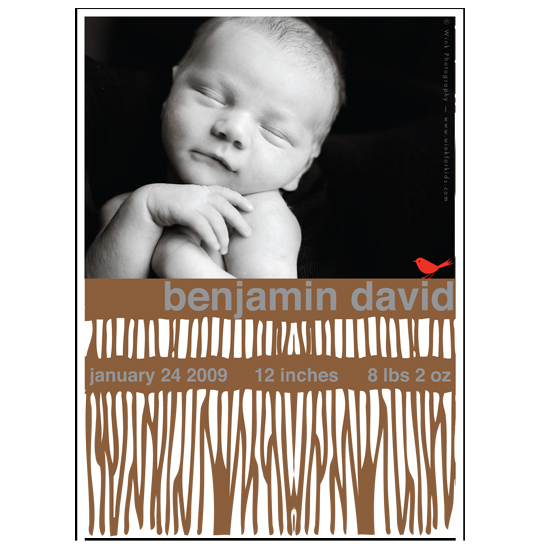 birth announcements - woodgrain by .cevd.