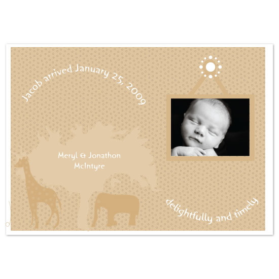 birth announcements - safari by bean and pie designs